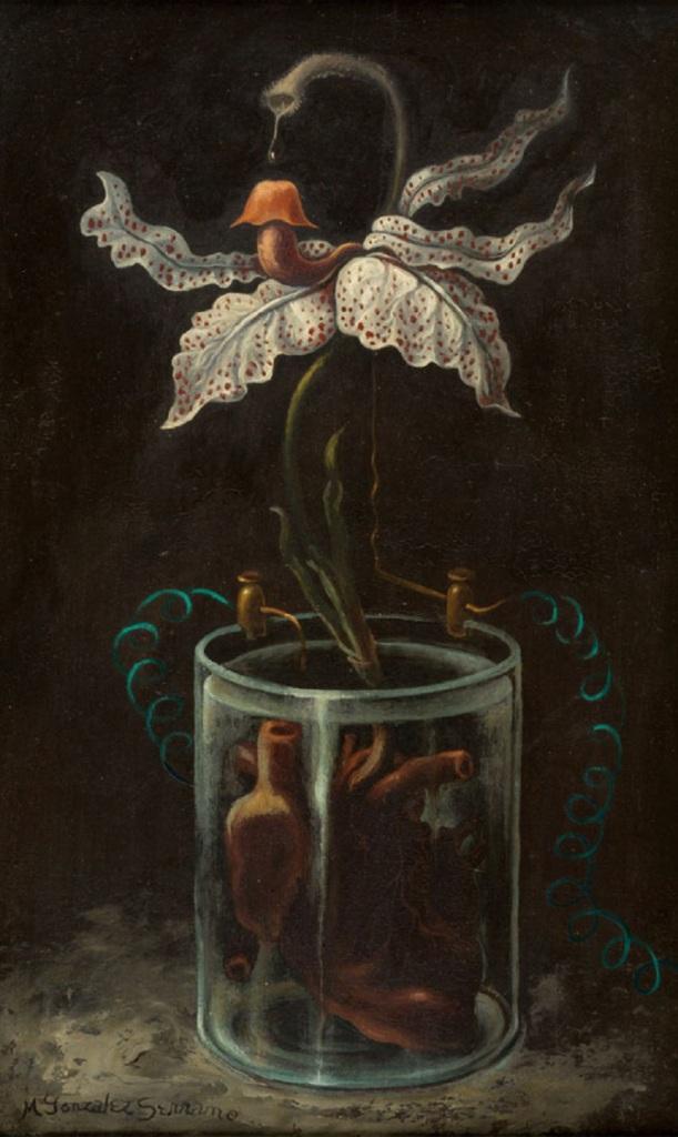 Manuel González Serrano - La flor de la alquimia