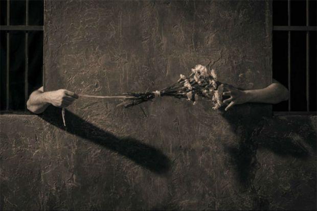 Steve Miller_un chand d'amour_foto